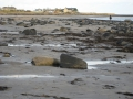 Boulmer bay at low water